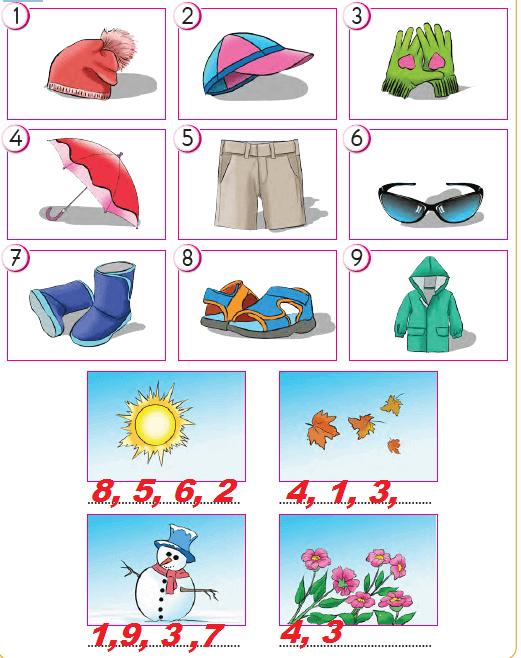 2. Sınıf Hayat Bilgisi SDR İpek Yolu Yayıncılık Sayfa 117 Ders Kitabı Cevapları