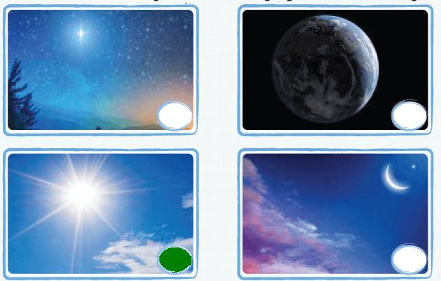 2. Sınıf Türkçe Ders Kitabı KOZA Yayıncılık Sayfa 177 Ders Kitabı Cevapları