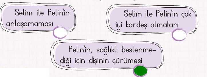 2. Sınıf Türkçe Ders Kitabı KOZA Yayıncılık Sayfa 238 Ders Kitabı Cevapları