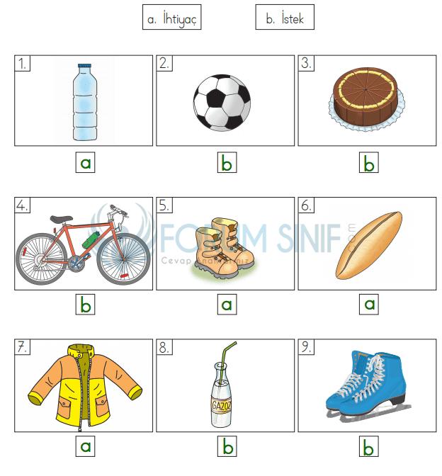 3. Sınıf Hayat Bilgisi Evren Yayıncılık Sayfa 73 Ders Kitabı Cevapları
