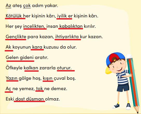 3. Sınıf Türkçe MEB Yayınları Sayfa 223 Ders Kitabı Cevapları