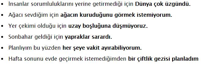 3. Sınıf Türkçe SDR Dikey Yayıncılık Sayfa 87 Ders Kitabı Cevapları