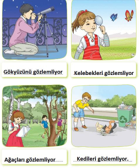 3. Sınıf Türkçe Ders Kitabı Sonuç Yayınları Sayfa 289 Ders Kitabı Cevapları