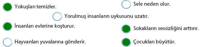 4. Sınıf Türkçe Ders Kitabı KOZA Yayıncılık Sayfa 157 Ders Kitabı Cevapları