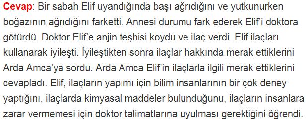 4. Sınıf Türkçe MEB Yayınları Sayfa 221 Ders Kitabı Cevapları