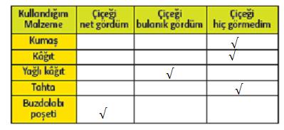 5. Sınıf Fen Bilimleri MEB Yayınları Sayfa 187 Ders Kitabı Cevapları