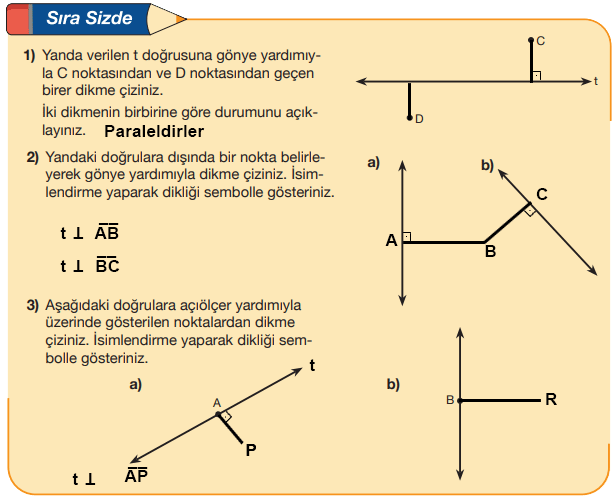 5. Sınıf Matematik MEB Yayınları Sayfa 221 Ders Kitabı Cevapları