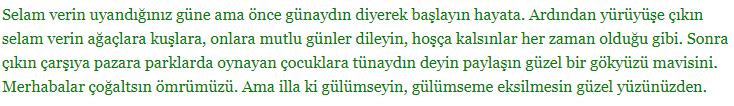 5. Sınıf Türkçe Ders Kitabı Anıttepe Yayıncılık Sayfa 22 Ders Kitabı Cevapları