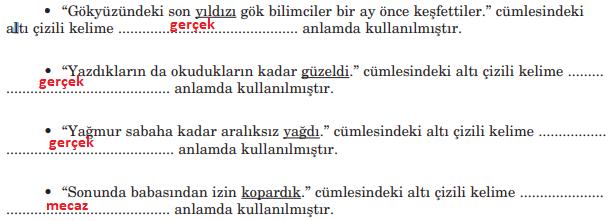 5. Sınıf Türkçe Ders Kitabı Anıttepe Yayıncılık Sayfa 37 Ders Kitabı Cevapları