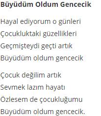 5. Sınıf Türkçe Ders Kitabı MEB Yayıncılık Sayfa 19 Ders Kitabı Cevapları