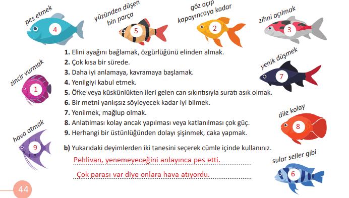 5. Sınıf Türkçe Ders Kitabı MEB Yayıncılık Sayfa 44 Ders Kitabı Cevapları
