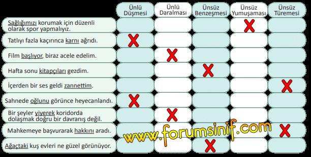 5. Sınıf Türkçe MEB Yayınları Sayfa 215 Ders Kitabı Cevapları