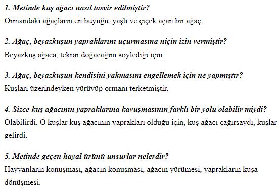 5. Sınıf Türkçe MEB Yayınları Sayfa 243 Ders Kitabı Cevapları