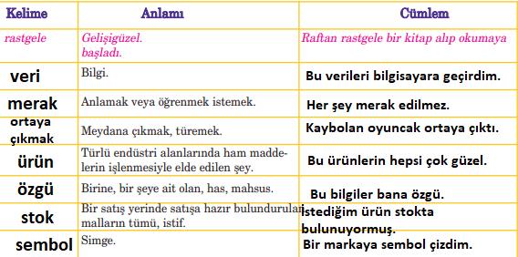 5. Sınıf Türkçe Ders Kitabı Anıttepe Yayıncılık Sayfa 221 Ders Kitabı Cevapları