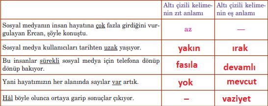 5. Sınıf Türkçe Ders Kitabı Anıttepe Yayıncılık Sayfa 226 Ders Kitabı Cevapları (1)