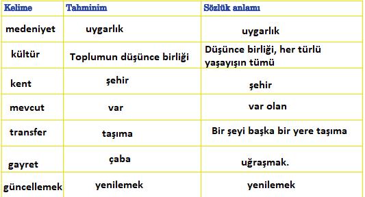 5. Sınıf Türkçe Ders Kitabı Anıttepe Yayıncılık Sayfa 233 Ders Kitabı Cevapları