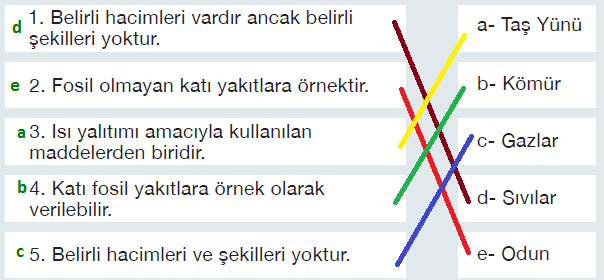 6. Sınıf Fen Bilimleri MEB Yayınları Sayfa 145 Ders Kitabı Cevapları