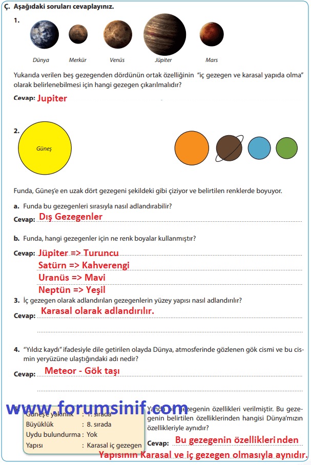 6. Sınıf Fen Bilimleri Sevgi Yayınları Sayfa 25 Ders Kitabı Cevapları