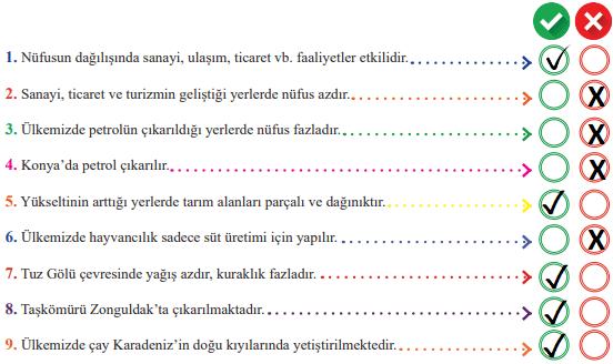 6. Sınıf Sosyal Bilgiler MEB Yayınları Sayfa 124 Ders Kitabı Cevapları