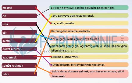 6. Sınıf Türkçe Ders Kitabı MEB Yayıncılık Sayfa 120 Ders Kitabı Cevapları