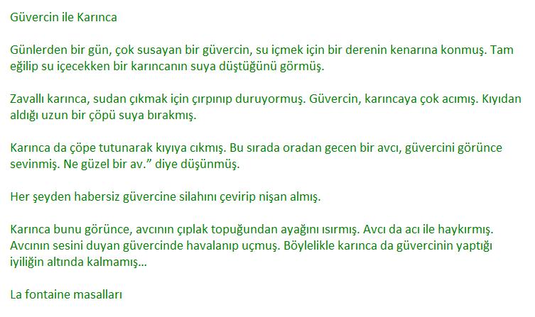 6. Sınıf Türkçe Ders Kitabı MEB Yayıncılık Sayfa 124 Ders Kitabı Cevapları