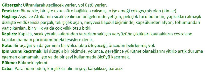 6. Sınıf Türkçe Ders Kitabı MEB Yayıncılık Sayfa 146 Ders Kitabı Cevapları
