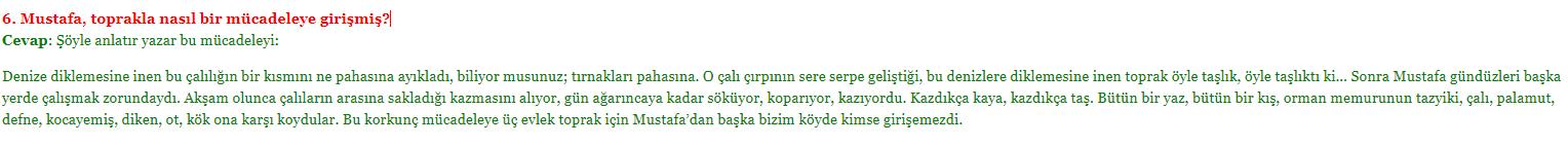 6. soru