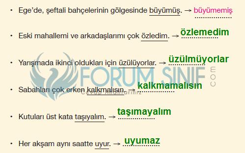 7. Sınıf Türkçe Ders Kitabı Özgün Yayınları Sayfa 96 Ders Kitabı Cevapları 8.etkinlik