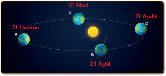 8. Sınıf Fen Bilimleri MEB Yayınları Sayfa 17 Ders Kitabı Cevapları