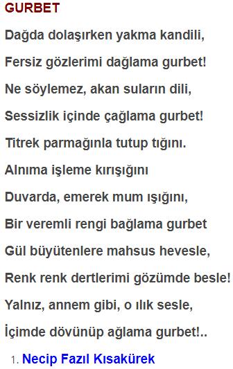 8. Sınıf Türkçe Ders Kitabı MEB Yayınları Sayfa 116 Ders Kitabı Cevapları