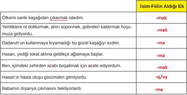 8. Sınıf Türkçe Ders Kitabı MEB Yayınları Sayfa 25 Ders Kitabı Cevapları