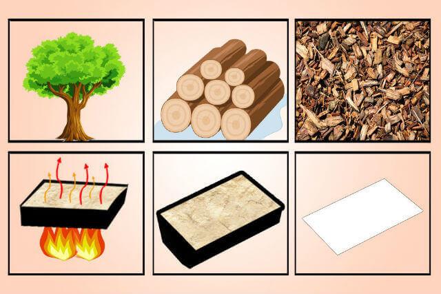 Kağıt Nasıl Üretilir