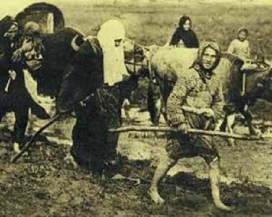 Türk kadınının kahramanlıklarını gösteren resim