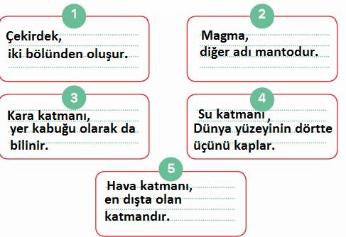 3. Sınıf Fen Bilimleri MEB Yayınları Sayfa 13 Çalışma Kitabı Cevapları Yardımcı Kaynak