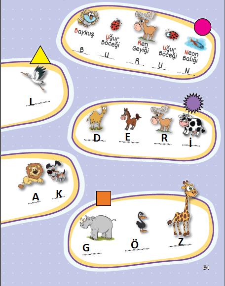 3. Sınıf Fen Bilimleri MEB Yayınları Sayfa 31 Çalışma Kitabı Cevapları Yardımcı Kaynak