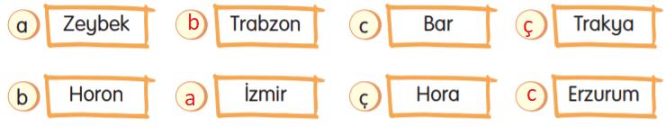 3. Sınıf Türkçe Gizem Yayıncılık Sayfa 114 Ders Kitabı Cevaplar