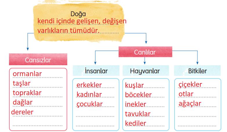 3. Sınıf Türkçe Gizem Yayıncılık Sayfa 127 Ders Kitabı Cevaplar