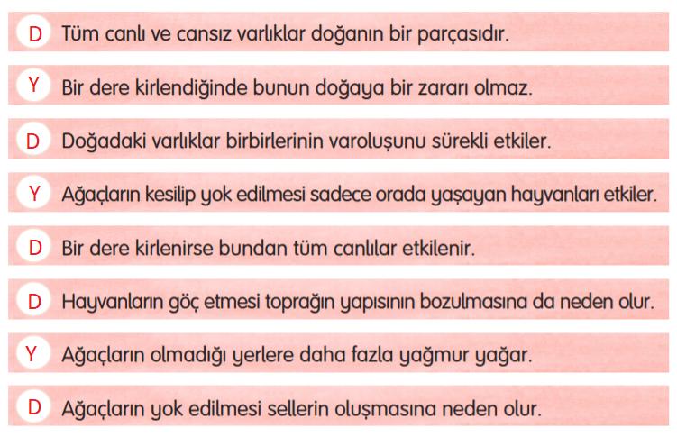 3. Sınıf Türkçe Gizem Yayıncılık Sayfa 127 Ders Kitabı Cevaplar2