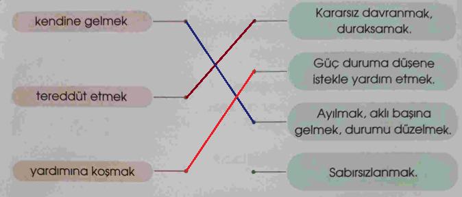 4. Sınıf Türkçe Özgün Yayınları Sayfa 24 Ders Kitabı Cevapları