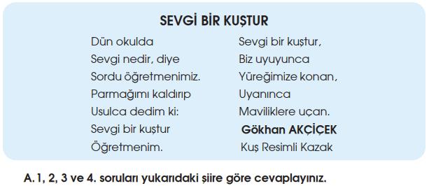 4. Sınıf Türkçe Özgün Yayınları Sayfa 35 Ders Kitabı Cevapları