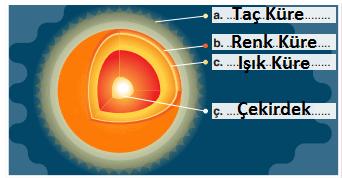 5. Sınıf Fen Bilimleri SDR Dikey Yayınları Sayfa 19 Ders Kitabı Cevapları2