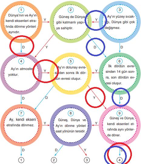 5. Sınıf Fen Bilimleri SDR Dikey Yayınları Sayfa 37 Ders Kitabı Cevapları