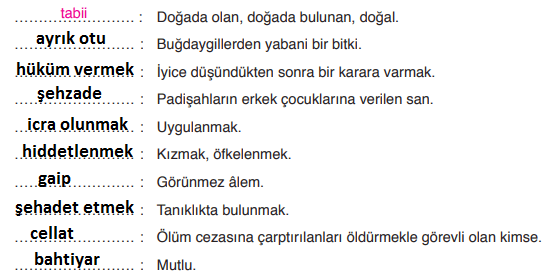 6. Sınıf Türkçe Ders Kitabı ATA Yayınları Sayfa 23 Ders Kitabı Cevapları