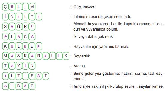 6. Sınıf Türkçe Ders Kitabı ATA Yayınları Sayfa 28 Ders Kitabı Cevapları