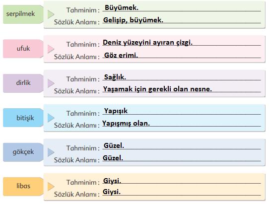 6. Sınıf Türkçe Ders Kitabı Ekoyay Yayınları Sayfa 215 Ders Kitabı Cevapları