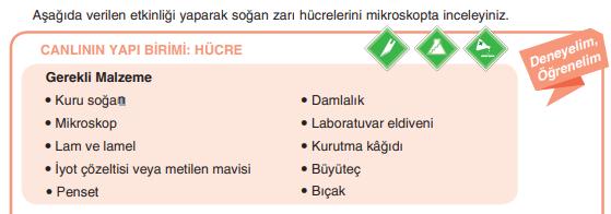 7. Sınıf Fen Bilimleri Yıldırım Yayınları Yayınları Sayfa 38 Ders Kitabı Cevapları