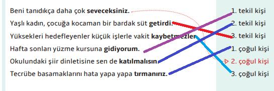 7. Sınıf Türkçe Ders Kitabı MEB Yayıncılık Sayfa 41 Ders Kitabı Cevapları