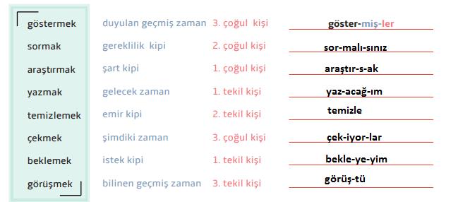 7. Sınıf Türkçe Ders Kitabı MEB Yayıncılık Sayfa 51Ders Kitabı Cevapları