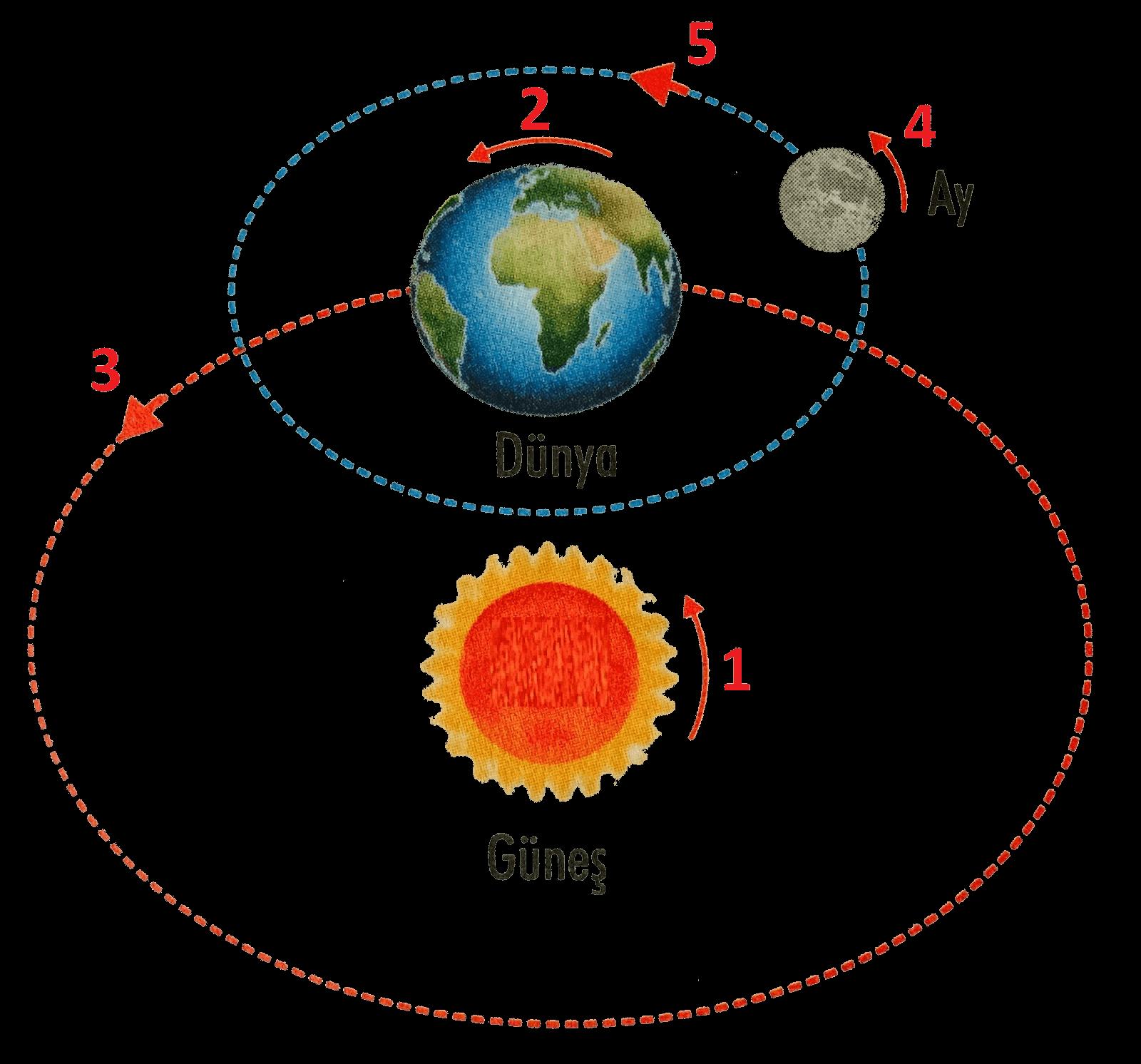 Güneş'in, Dünya'nın ve Ay'ın dönme ve dolanma yönleri