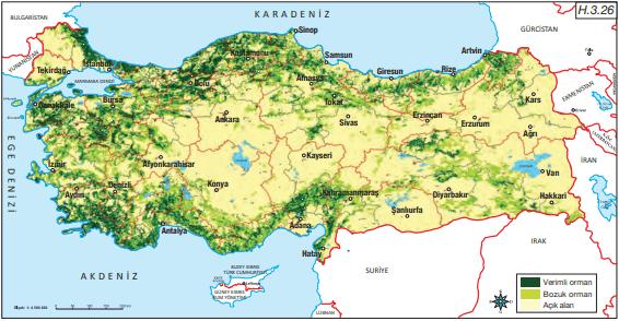 Türkiye Orman Dağılımı Haritası